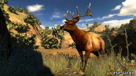 Cabelas Hunting Expeditions (2012) PC