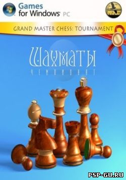 Chess Tournament (2013)